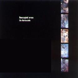 Martusciello, Elio: Unoccupied areas (Recommended Records)