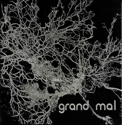 Bruckmann / Diaz-Infante / Shiruba / Stackpole: Grand Mal (pax)