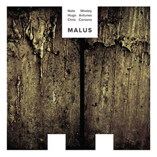 Wooley, Nate  / Hugo Antunes / Chris Corsano: MALUS [VINYL] (NoBusiness)
