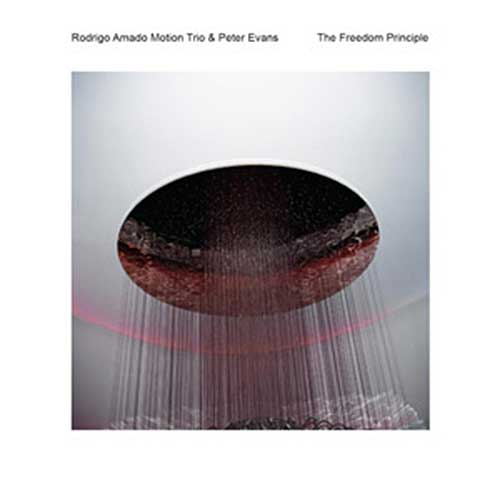 Amado, Rodrigo Motion Trio & Peter Evans: The Freedom Principle (NoBusiness)