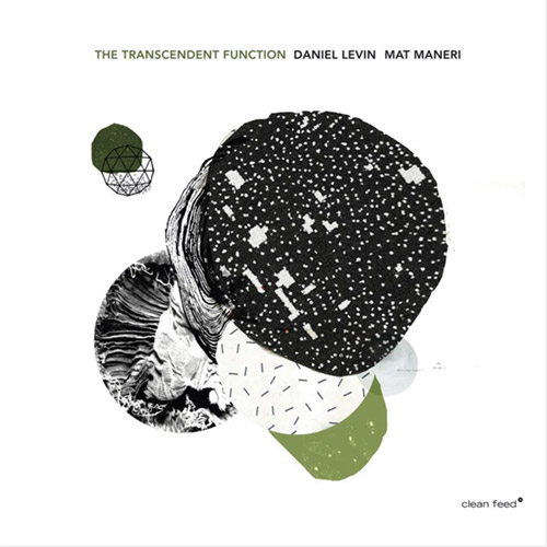 Levin, Daniel / Mat Maneri: Transcendent Function (Clean Feed)