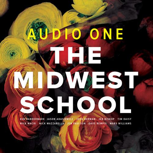 Audio One (Vandermark/Adasiewicz/Berman/Bishop/Rempis/Williams/Mazzarrella/Daisy/Macri/Paulson): The (Audiographic Records)