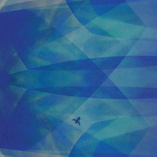 Baptista, Cyro: Bluefly (Tzadik)