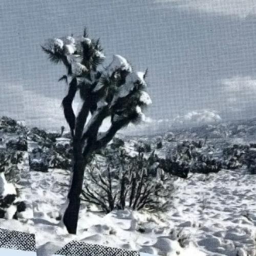 Ambarchi, Oren / Kassel Jaeger / James Rushford: Pale Calling [VINYL] (Black Truffle)