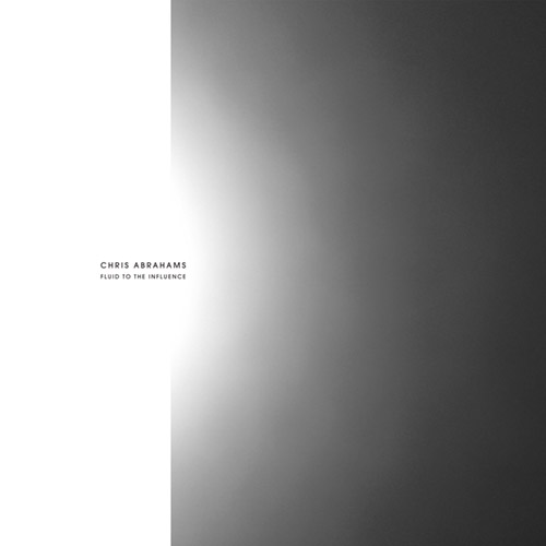 Abrahams, Chris: Fluid To The Influence [VINYL] (Room40)