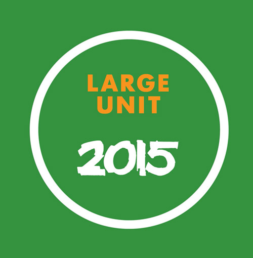 Large Unit: 2015 [BOOK + 2 CDS] (PNL)