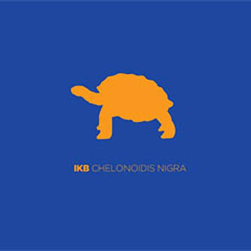 IKB: Chelonoidis Nigra (Creative Sources)