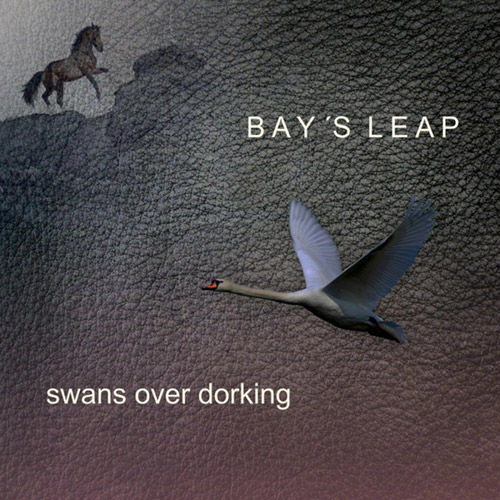 Bay's Leap: Swans Over Dorking (Citystream)