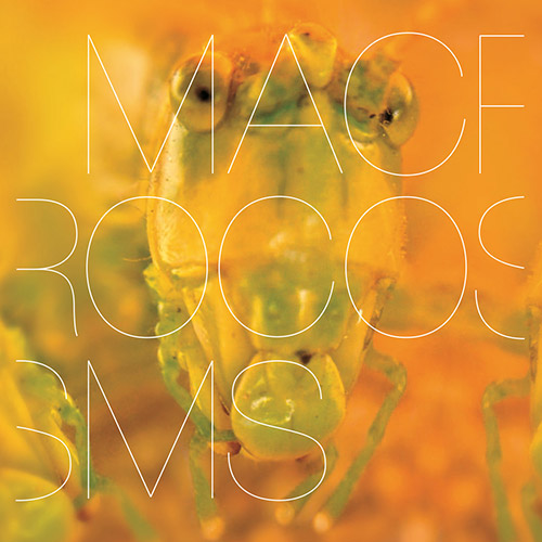 Banabila & Machinefabriek: Macrocosms (Tapu Record)