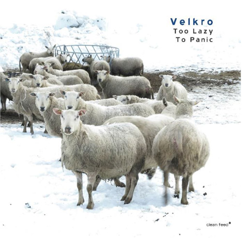 Velkro (Simon / Meidell / Candeias): Too Lazy to Panic (Clean Feed)