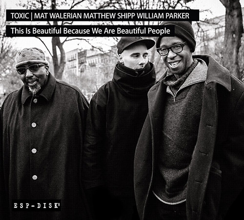 Toxic: Mat Walerian / Matthew Shipp / William Parker: This Is Beautiful Because We Are Beautiful Peo (ESP-Disk)