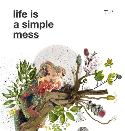 Travassos: Life Is A Simple Mess [BOOK + CD] (Shhpuma)
