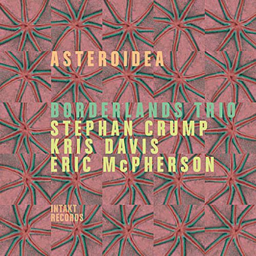 Borderlands Trio (Stephan Crump / Kris Davis / Eric McPherson): Asteroidea (Intakt)