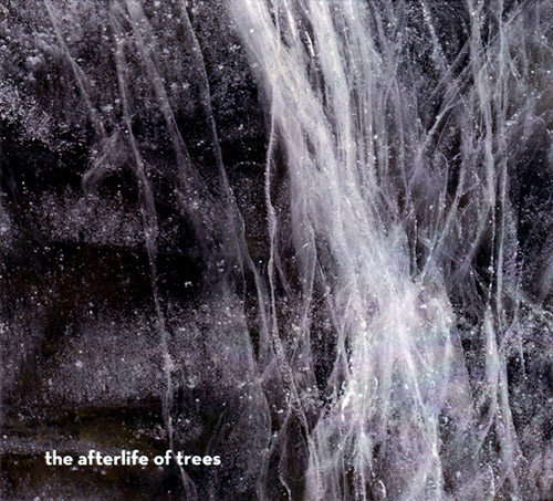 Voutchkova / Rodrigues / Rodrigues / Mayas: The Afterlife of Trees (Creative Sources)