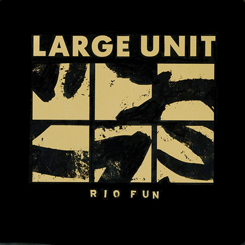 Large Unit: Rio Fun [VINYL] (PNL)