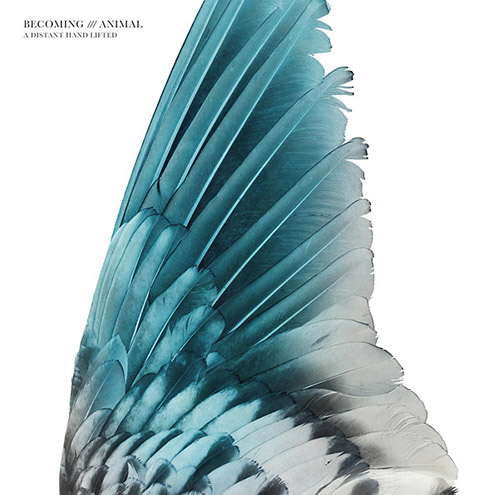 Becoming Animal (Massimo Pupillo / Gordon Sharp): A Distant Hand Lifted [VINYL] (Trost Records)