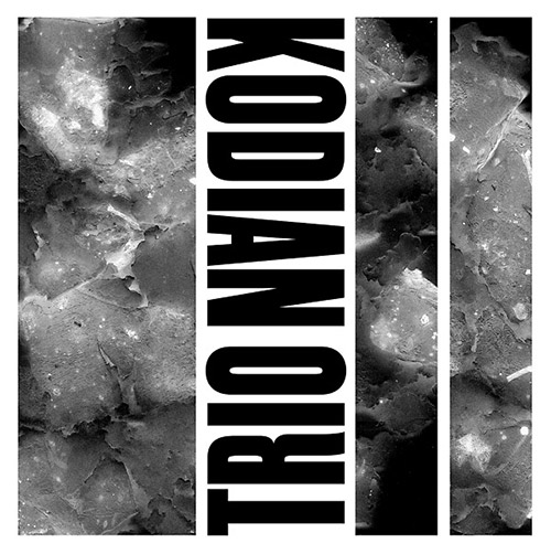 Kodian Trio: II [VINYL] (Trost Records)