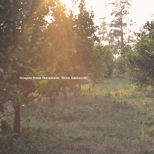 Ambarchi, Oren: Grapes From The Estate [VINYL 2 LPs] (Black Truffle)