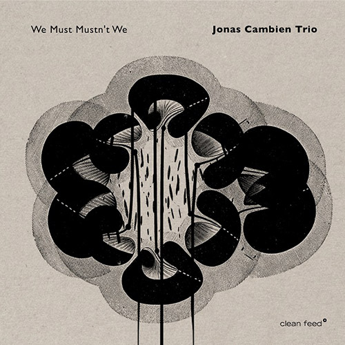 Cambien, Jonas Trio (w / Roligheten / Wildhagen): We Must Mustn't We (Clean Feed)