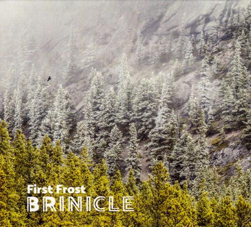 Brinicle (McCormick / Bjorgo / Antalova): First Frost (Creative Sources)