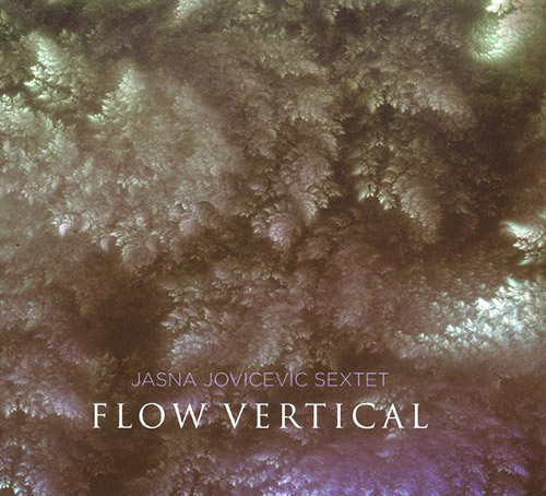 Jovicevic, Jasna Sextet: Flow Vertical (FMR)