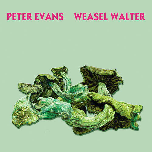 Evans, Peter / Weasel Walter: Poisonous (Ugexplode)