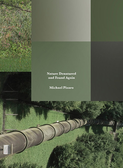Pisaro, Michael : Nature Denatured and Found Again  [5 CD Box Set] (Gravity Wave)