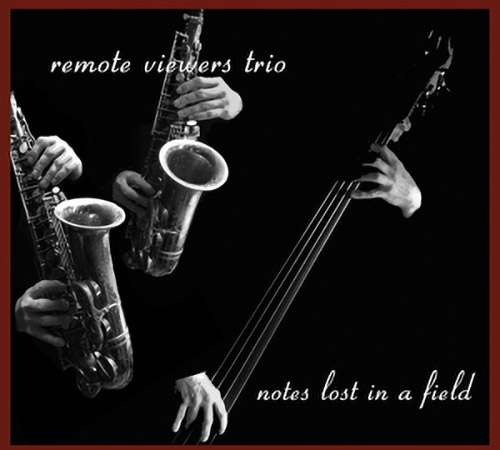 Remote Viewers Trio, The (Petts / Northover / Edwards): Notes Lost In A Field (Remote Viewers)
