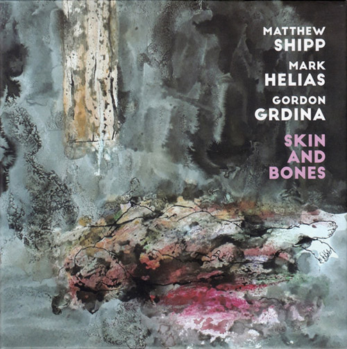 Shipp, Matthew / Mark Helias / Gordon Grdina: Skin and Bones (Not Two)