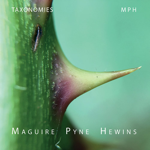MPH (Maguire / Pynew / Hewins): Taxonomies (Discus)