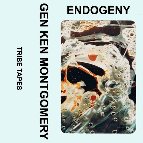 Montgomery, Gen Ken: Endogeny [CASSETTE] (Tribe Tapes)