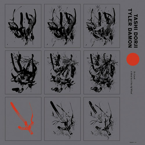 Dorji, Tashi / Tyler Damon: To Catch A Bird In A Net Of Wind [VINYL] (Trost Records)