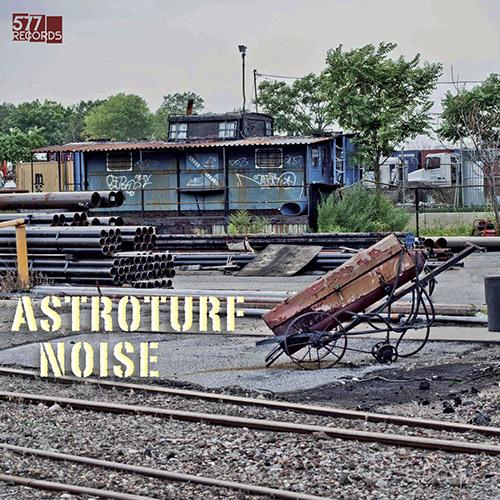 Astroturf Noise (Harmet / Nagano / Swanson / Martin / Bernstein): Astroturf Noise  [VINYL] (577)