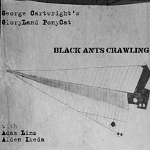 Cartwright's GloryLand PonyCat, George : Black Ants Crawling (Innova)