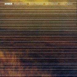 Davies / Hayward / Eckhardt / Capece: Amber (Creative Sources)