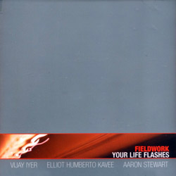 Fieldwork: Your Life Flashes (Pi Recordings)