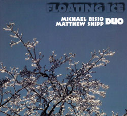 Bisio, Michael / Matt Shipp Duo: Floating Ice (Relative Pitch)