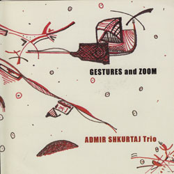Shkurtaj Trio, Admir: Gestures and Zoom