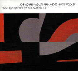 Morris / Fernandez / Wooley: From The Discrete To The Particular (Relative Pitch)
