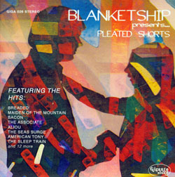 Blanketship: Pleated Shorts