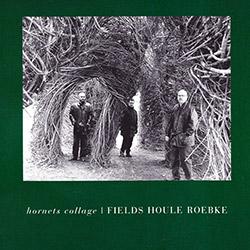 Fields / Houle / Roebke: Hornets Collage <i>[Used Item]</i>