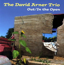 Arner Trio, David: Out/In the Open <i>[Used Item]</i> (Not Two Records)
