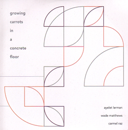 Lerman, Ayelet / Wade Matthews / Carmel Raz: Growing Carrots in a Concrete Floor