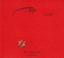 Metheny, Pat: Tap: The Book Of Angels Vol. 20