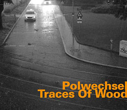 Polwechsel: Traces Of Wood (Hatology)