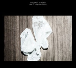 Parker, Evan & Joe McPhee: What / If / They Both Could Fly [VINYL] (Rune Grammofon)
