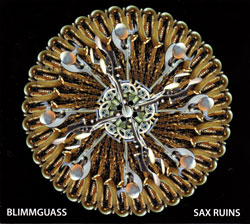 Sax Ruins: Blimmguass [JAPANESE EDITION]