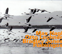 Nagl, Max / Otto Lechner / Bradley Jones: Flamingos (Hatology)