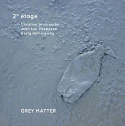 Wodrascka, Christine / Jean-Luc Cappozzo / Gerry Hemingway: Grey Matter (NoBusiness)