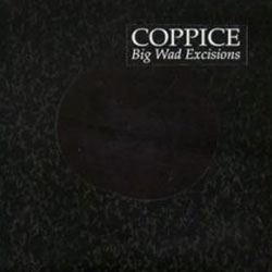 Coppice: Big Wad Excisions (Quakebasket)